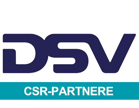 DSV logo 450x350