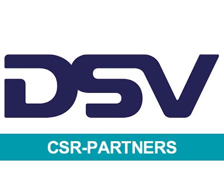 DSV logo engelsk