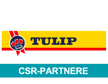 Tulip logo 450x350